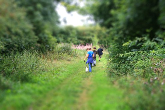 fosse meadows tiltshift