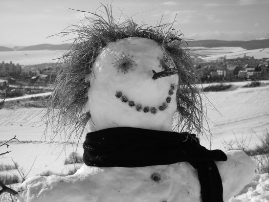 Snowwoman with twiggy hair and dried flower eyes