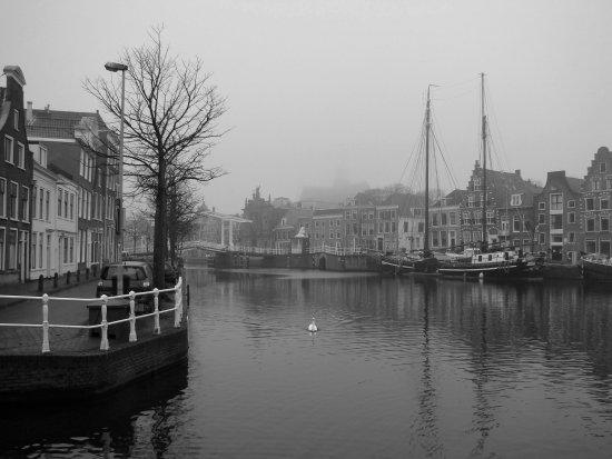 Holland Spaarne St Bavo architecture nature