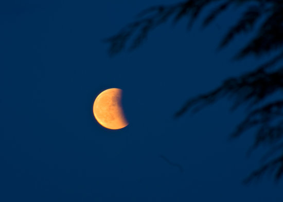 Eclipse of the Moon from my home
