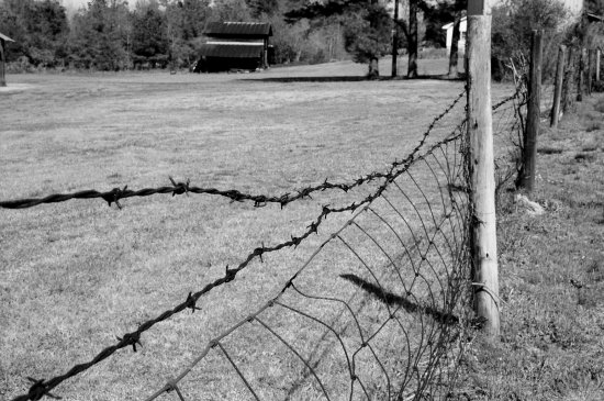 farm farmland barbedwire blackandwhite