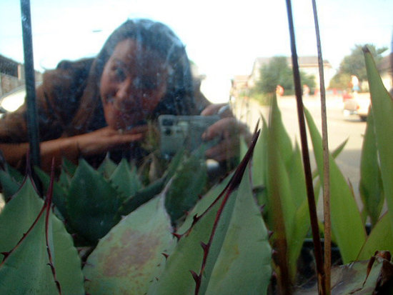 Me in the mirror box . . . with Century Plant in foreground