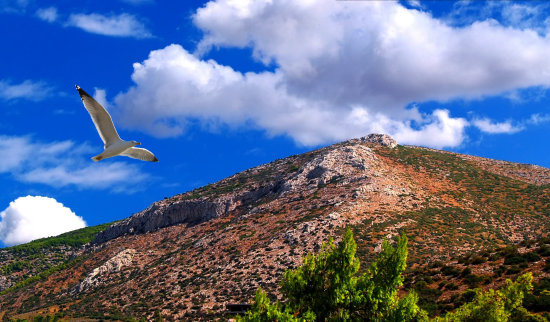 lagonisi greece hill sky blue clouds seagull