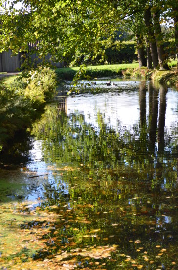 autumn fall fraeylemaborg groningen reflectionthursday