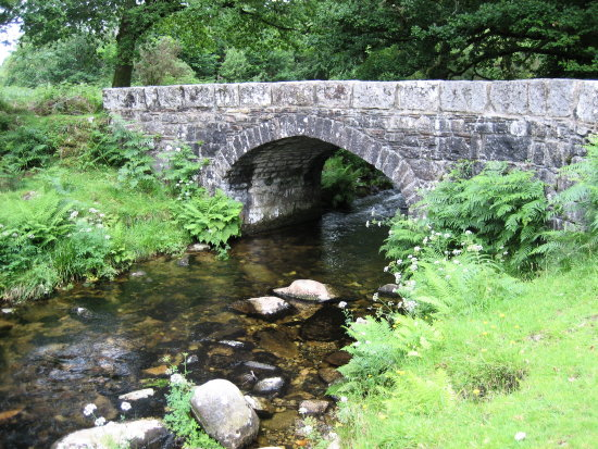 bridge stream Dartmoor
