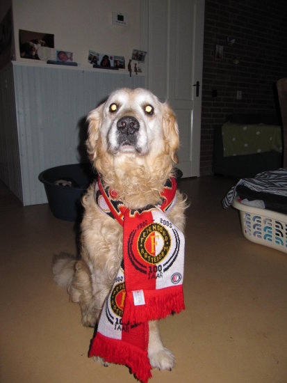 My own dog! =D