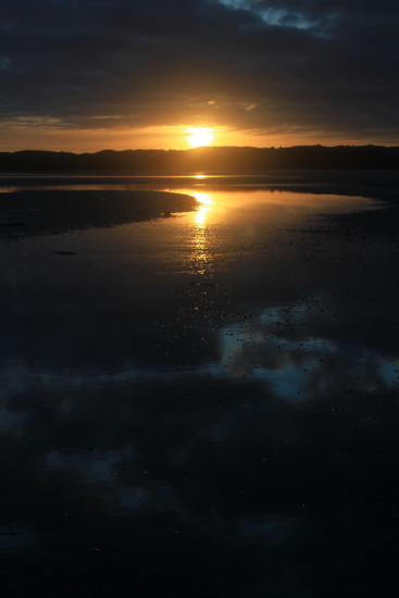 cockle bay sunrise