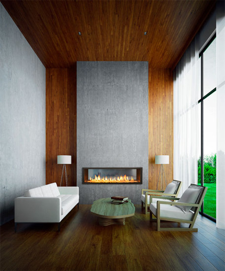 Modern Gas Fireplace by Town Country