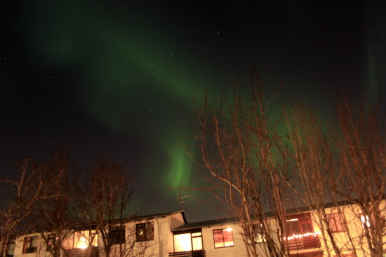 Took this in Reykjavik tonight at around 23:00 hours --- always cool to see the Aurora Borealis