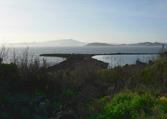 The point at the Albany Bulb faces the Golden Gate (just left of this shot).