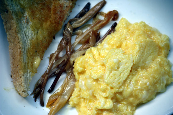 Scrambled duck eggs with day lily buds and toast.