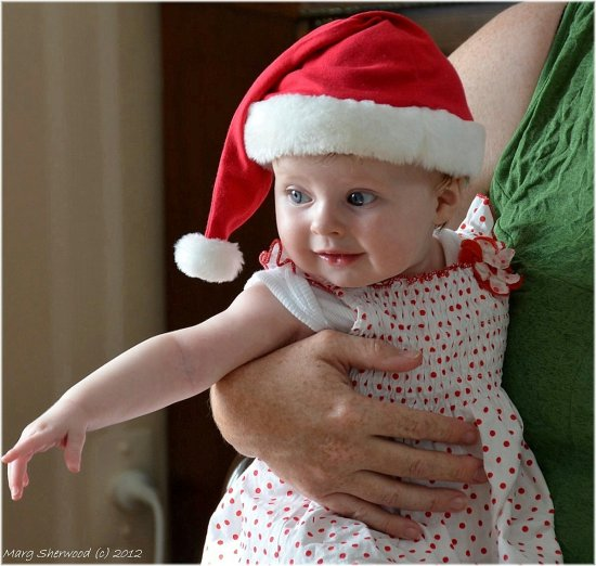 Olive Rose enjoying herself on Christmas Day . By Boxing Day she was very sick and in hospital ....