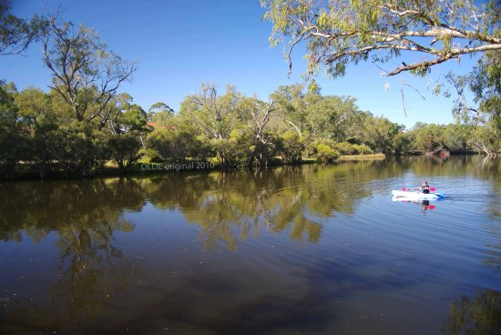 reflectionthursday paddling river swan valley perth littleollie