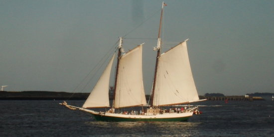 Sailboat in the Boston Harbor