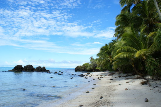 Motukitiu island, Aititaki, Cook Islands. Filming, and camp location for Survivor Cook Islands 