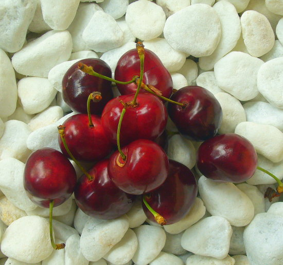 2008 lupionstyle cereza cherry