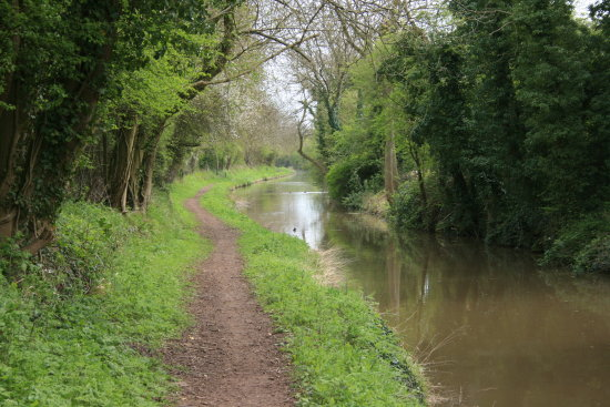 Canal in Nuneaton