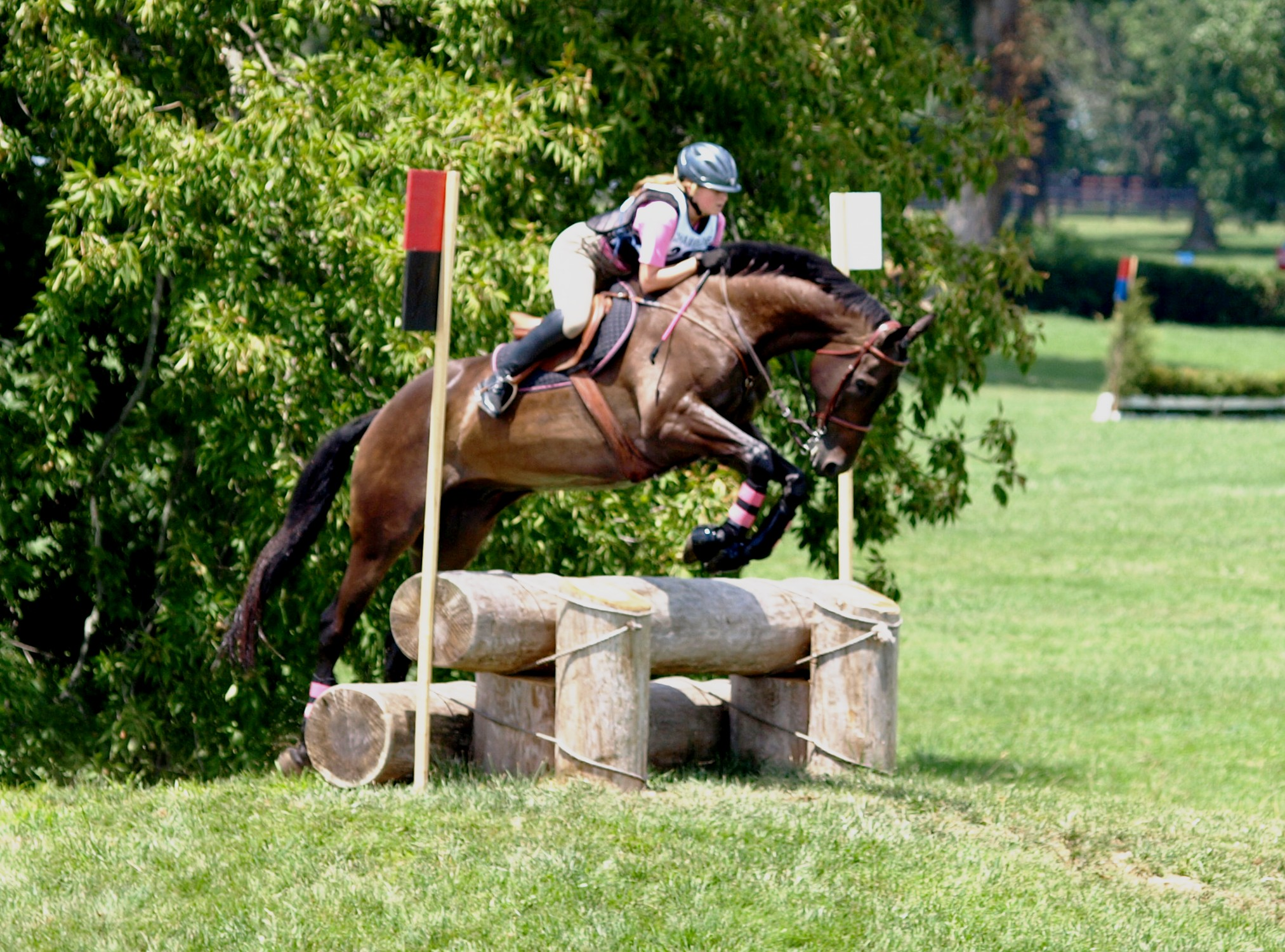 Horses jumping cross country - photo#1