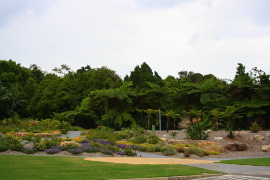 mount annan botanical gardens a nice place to visit and relax for a couple of hrs
