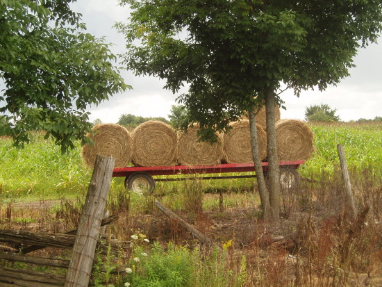 hay country road landscape