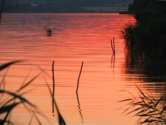 sunset lake balaton fishing