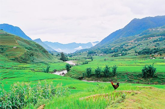 Valley Sapa
