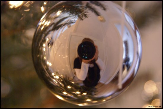 reflectionthursday christmassball carlimauda