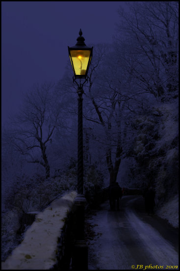 lamplight frost winter lane lamp light landscape