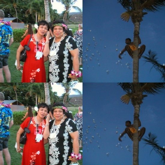 Radiance in Luau
