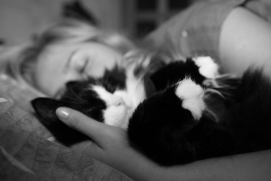 sleeping with pupa cat bw milibuhscatclub