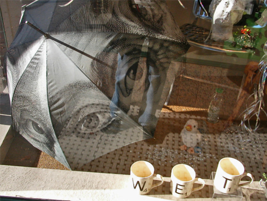shop window umbrella mugs wet funfph