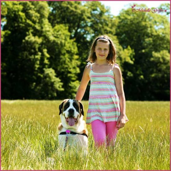 dog holly saint bernard girl park long grass
