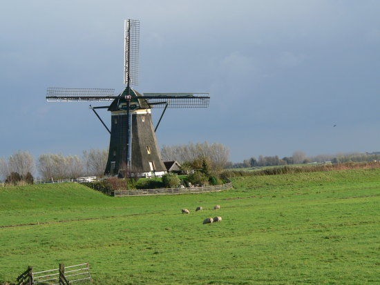 landscape holland windmill