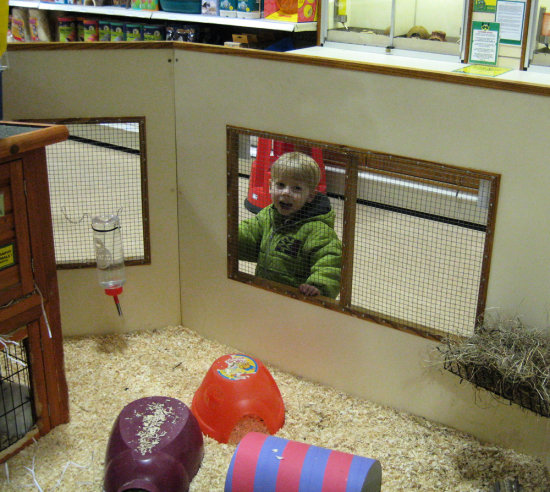1 of 6. We looked after my Godson, Ben, for the day on Sunday.