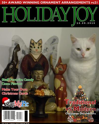 hollydays cat