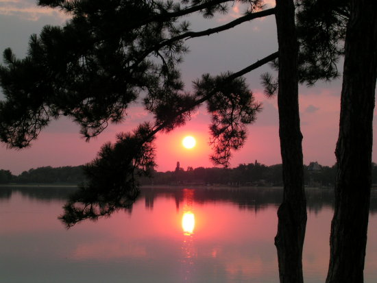 Palic sunset :)