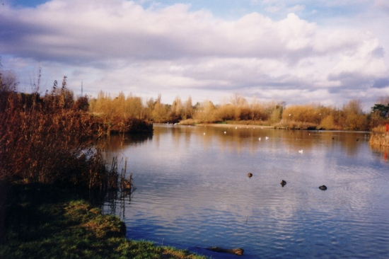 Autumn South Norwood Lake Side View