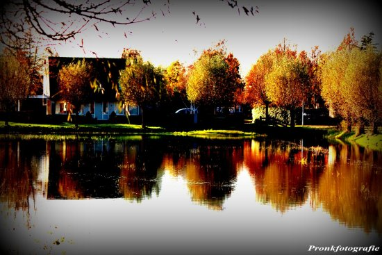 autumn nature water reflection