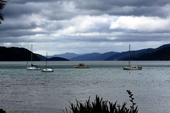 marlboroughsounds marlborough sounds anakiwa landscape