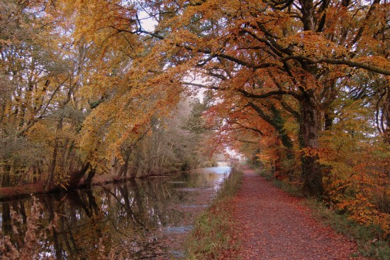 autumn great western canal canalclub