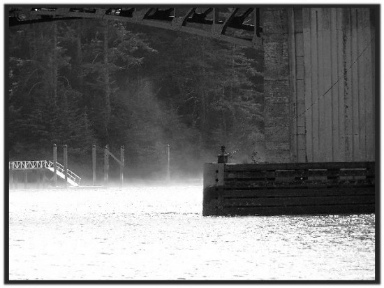 Florence series: The end Fog starting to roll in under the bridge. Time to go!