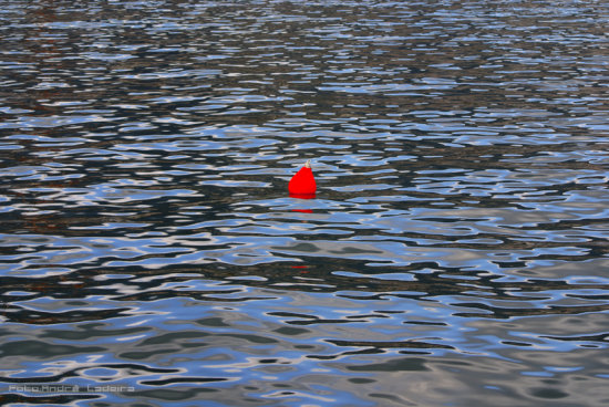 red buoy boia Funchal harbor Madeira Sea floating Portugal