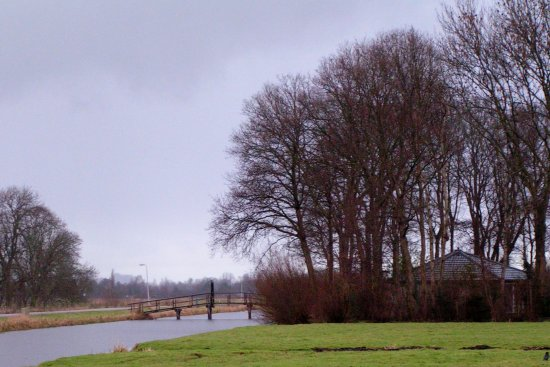 Polder landscape dutch