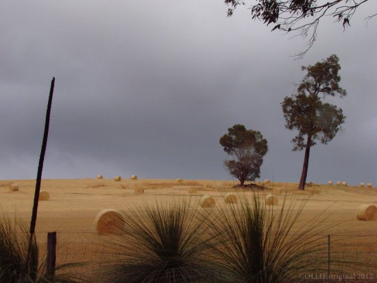 hay bales rough weather perth hills littleollie