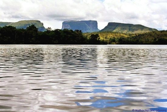 jungle tepuis river canaima water gransabana