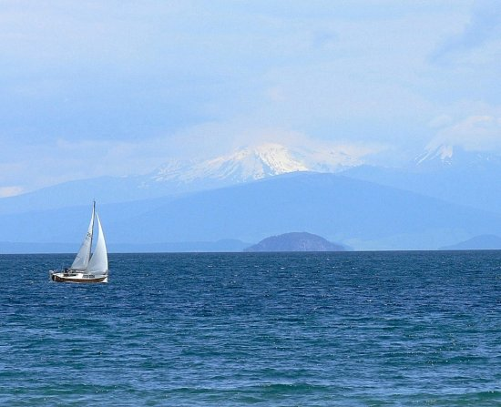 summer lake taupo nz