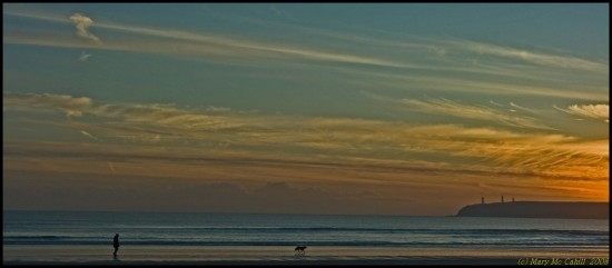 water sea man dog dusk sunset tramore waterford ireland