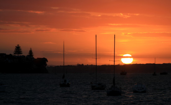sunrise waitemata harbour
