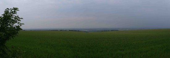 Normanby Wolds