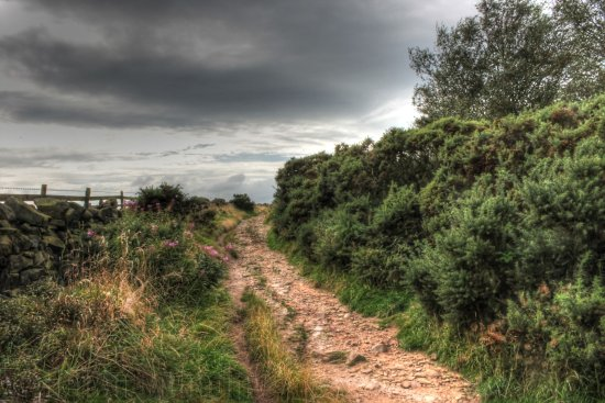 Ottley Chevin Hills Rocks path country Yorkshire HDR